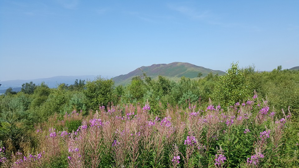 Conic Hill appearing