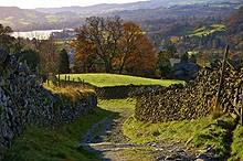 lane on the westmorland way