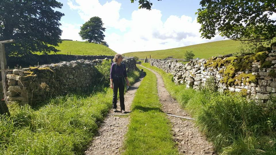 Herriot Way Aysgarth to Hawes
