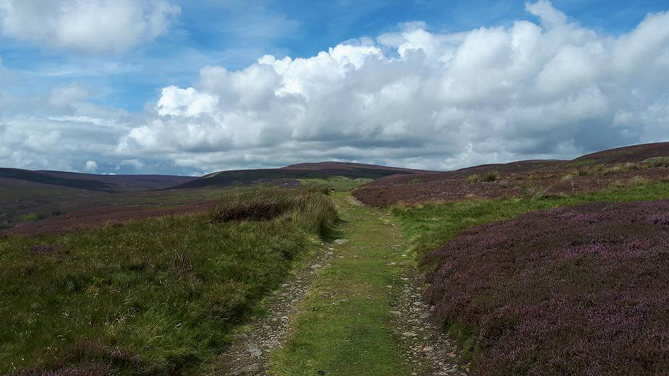 Herriot Way Keld to Reeth