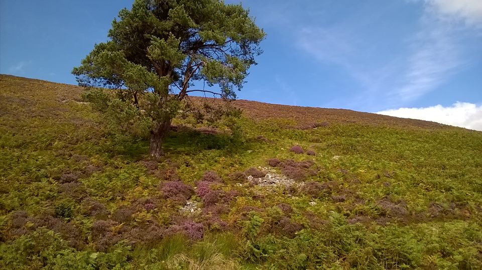 Keswick to Caldbeck on the Cumbria Way