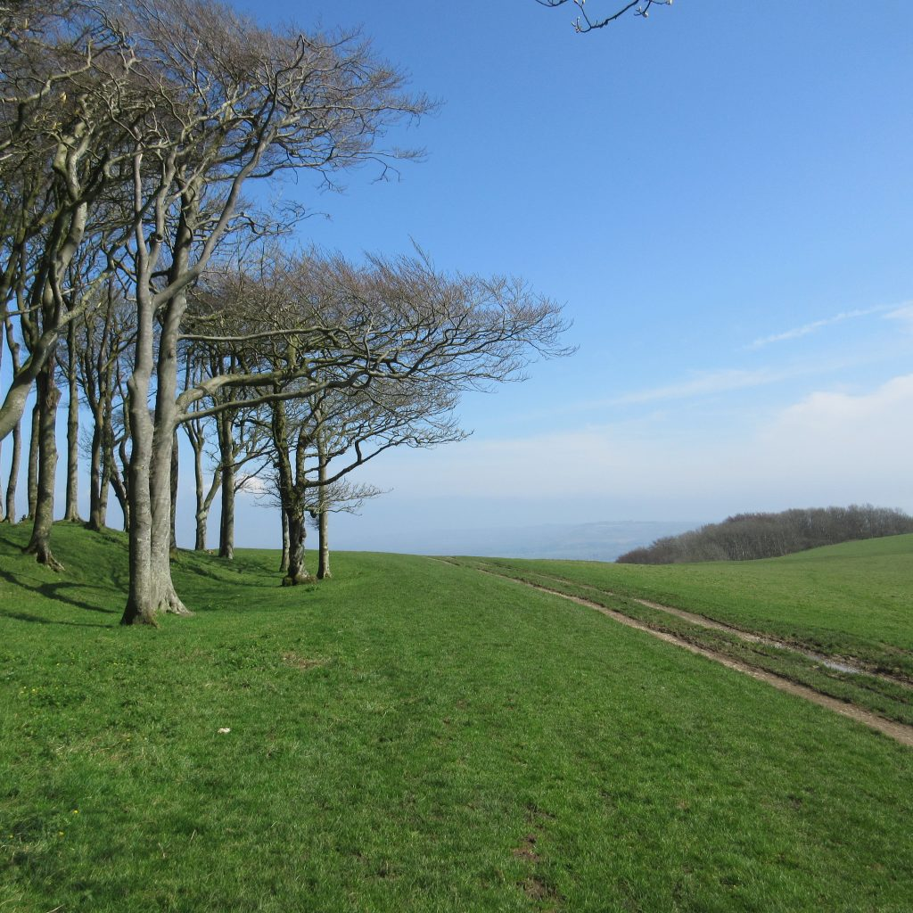 Lovely weather on the South Downs Way