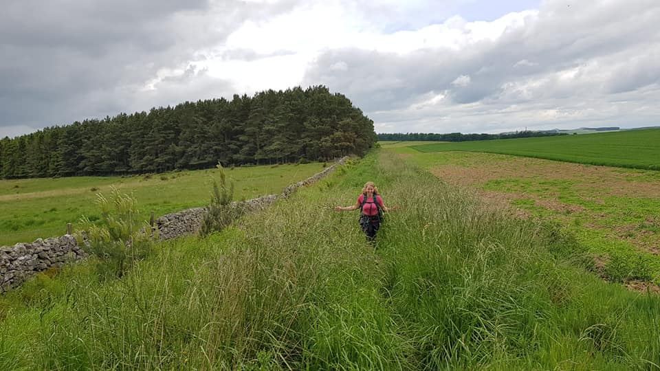 St Cuthberts Way - Harestanes to Morebattle.