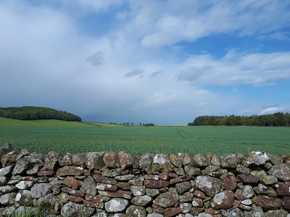 St Cuthbert's Way - Melrose to Harestanes