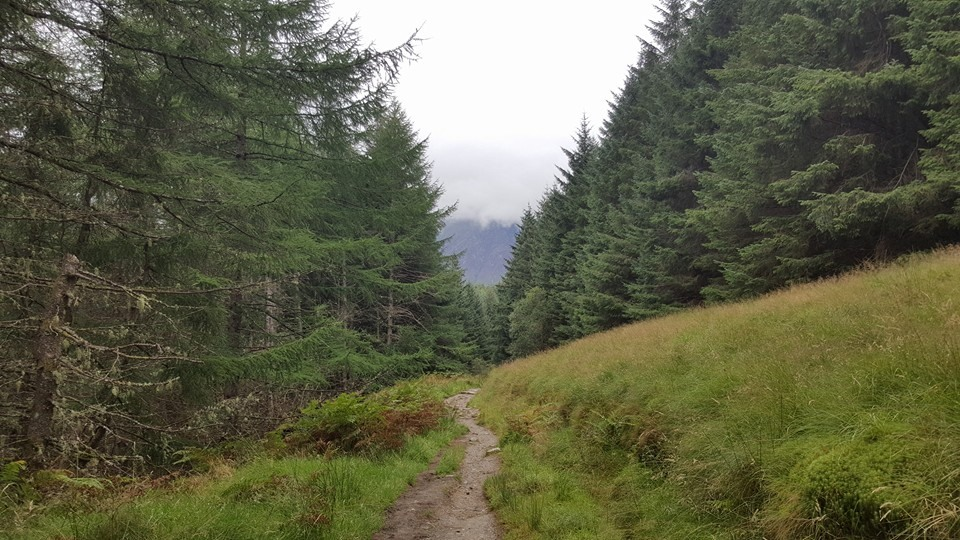 The first view of Ben Nevis in Nevis Forest