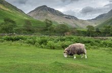 Mosedale Valley above Wasdale Head